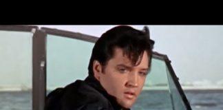 Elvis Night on THIS TV